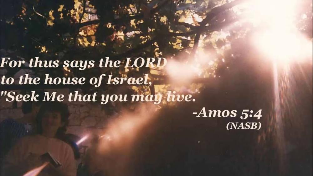 Seek Me That You May Live