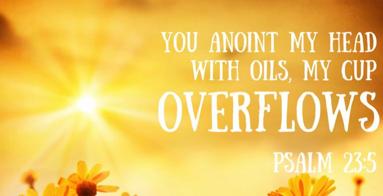 You Have Anointed My Head With Oil