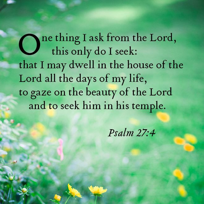 One Thing I Have Asked From The Lord