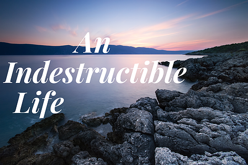 The Power Of An Indestructible Life