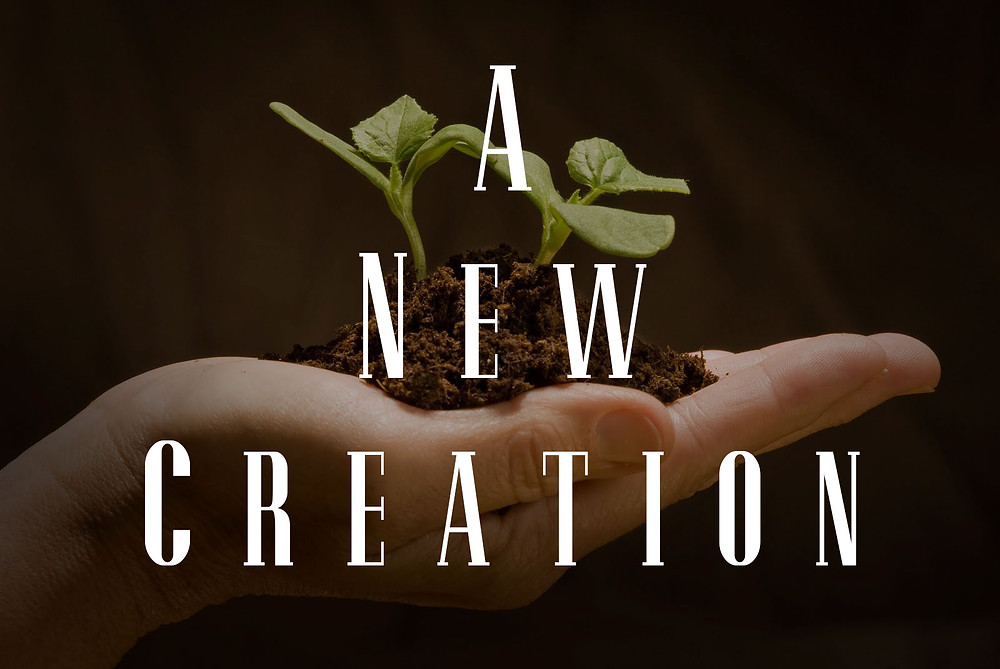 A New Creation In & By A New Covenant
