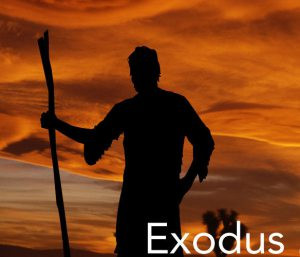 """The First Time God Said The Word """"Priest"""" In Exodus"""