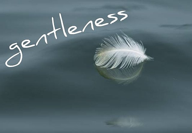Image result for gentleness