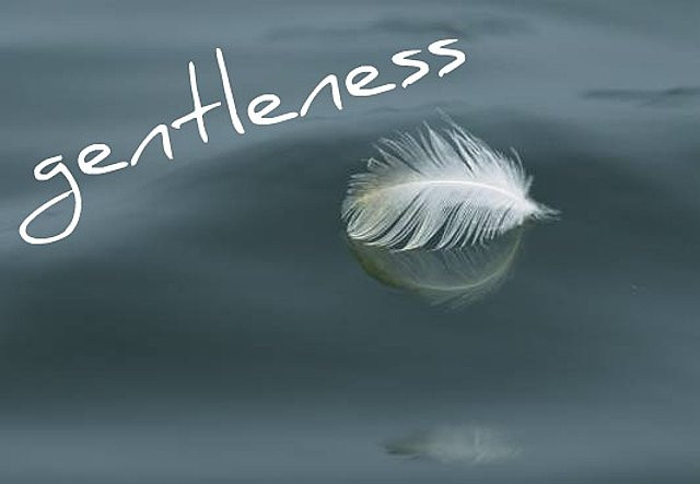 The Power Of Gentleness