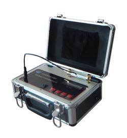 194-02 电稳定性测试仪 DWY-2