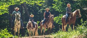 HorsePicsRuggiero'sRiding.jpg