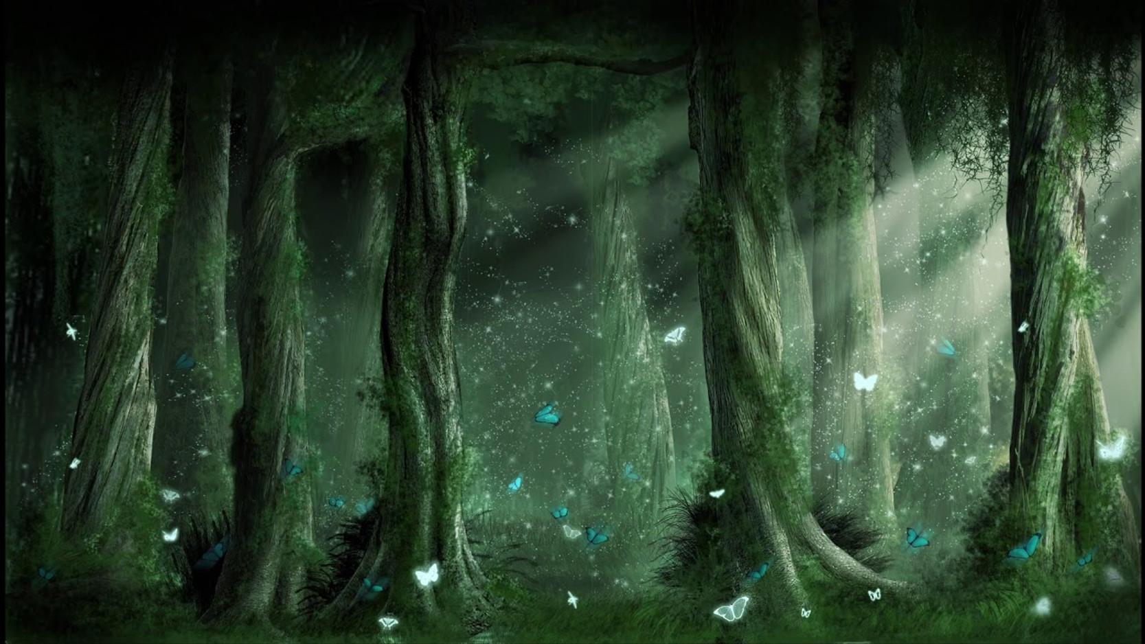 Secret de la forest - Eunji YU (2020)