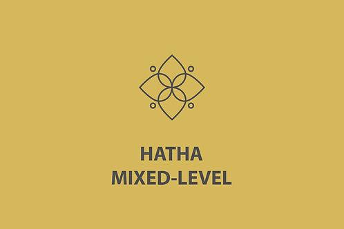 Hatha / Yin / Restorative  Virtual Class