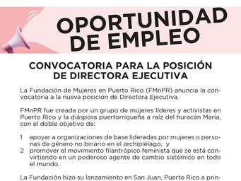 Convocatoria | Directora Ejecutiva