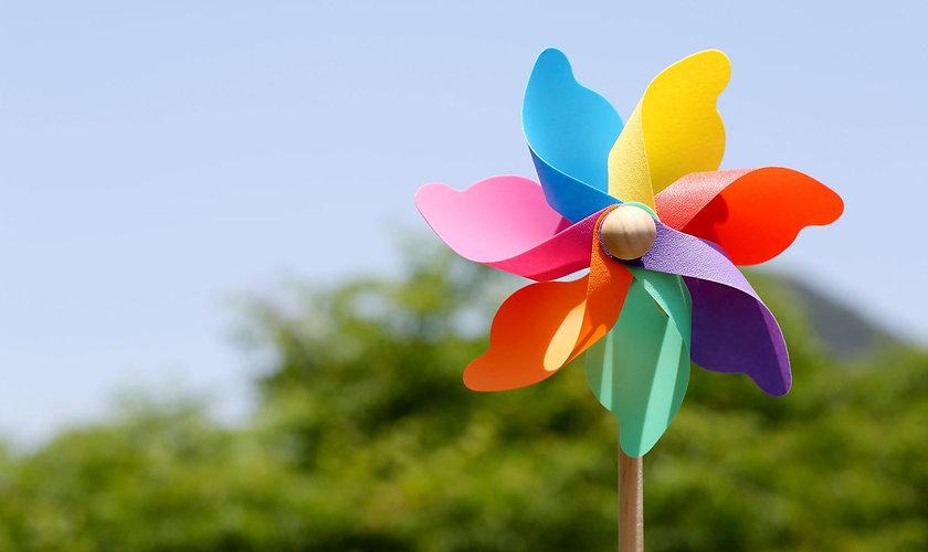 Pinwheel-Garden-2-scaled_edited.jpg