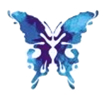 papillon_edited_edited.png