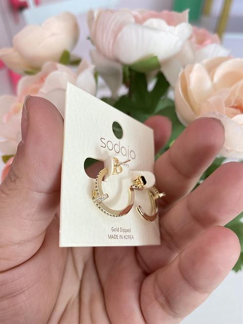 Luxury Earrings