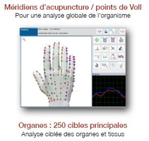 Cibles Biospect, Méridiens d'acupuncture