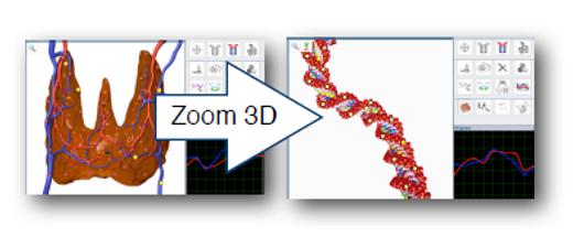 Zoom 3D Biospect jusque dans l'ADN