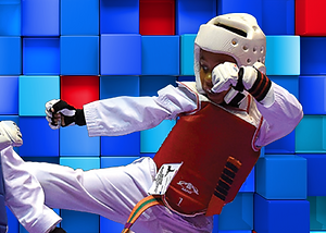 Taekwondo2.png