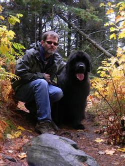 Newfoundland Dog, Algonquin Park