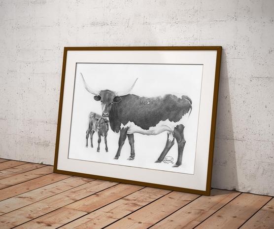 Longhorn & Cow