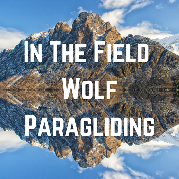 In The Field Wolf Paragliding Blog Post Title Graphic