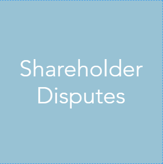 We have experience helping clients with shareholder disputes. We can provide preliminary consulting on valuation issues as well more formal and meticulously documented appraisals (taking into account appropriate case law). Our team of professionals can also provide expert testimony