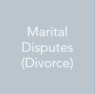 We have experience helping clients with marital disputes (divorce). We can provide preliminary consulting on valuation issues as well more formal and meticulously documented appraisals (taking into account appropriate case law). Our team of professionals can also provide expert testimony