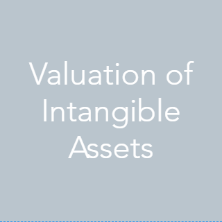 We can help value patents, trademarks, copyrights, trade secrets and other forms of intellectual property (IP). We are familiar with several different IP valuation methodologies e.g. relief from royalty & excess earnings. Rely on our expertise to utilize the most appropriate analytical approach for a given situation
