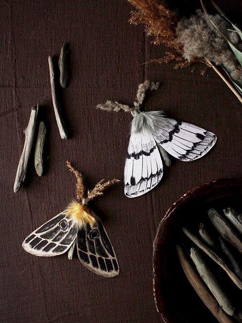 Paper Moth Printables