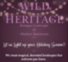 Wild Heritage, Holiday, Decorating, Lights,