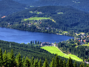 For German Born people the Black Forest can have two different meanings one mysterious and one sweet