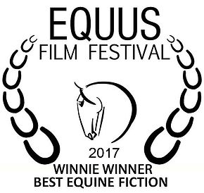 equus 2017 award winner.jpg