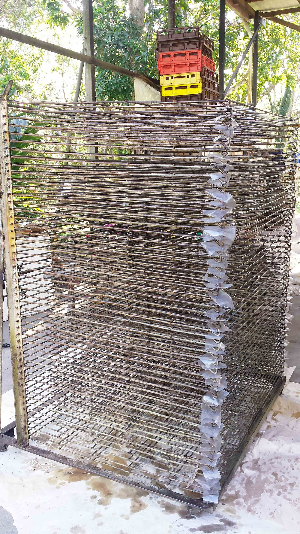 drying rack working bee 3.jpg