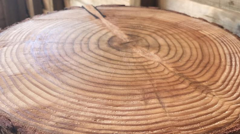 Sanded and oiled rustic log cake stands