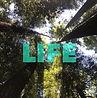 JUNE 2021 TNW-LIFE1.jpg