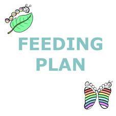 13 FEEDING PLAN