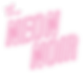 NN_logo-05.png