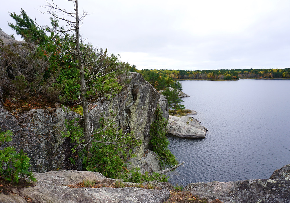 View from a small cliff over McCrae Lake