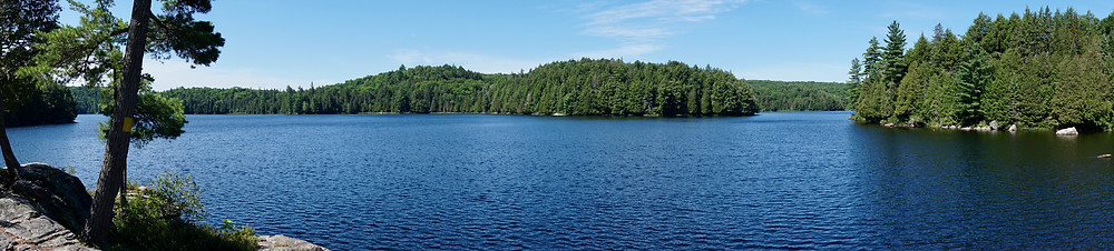 Panoramic photography of Algonquin Park, Ontario