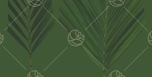 Ikebana Palm