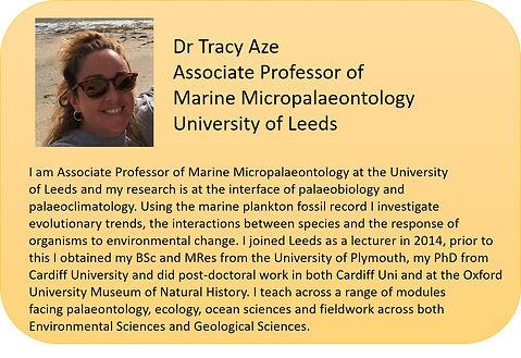 Tracy Aze.jpg
