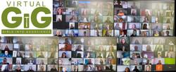 Virtual GIG attendees