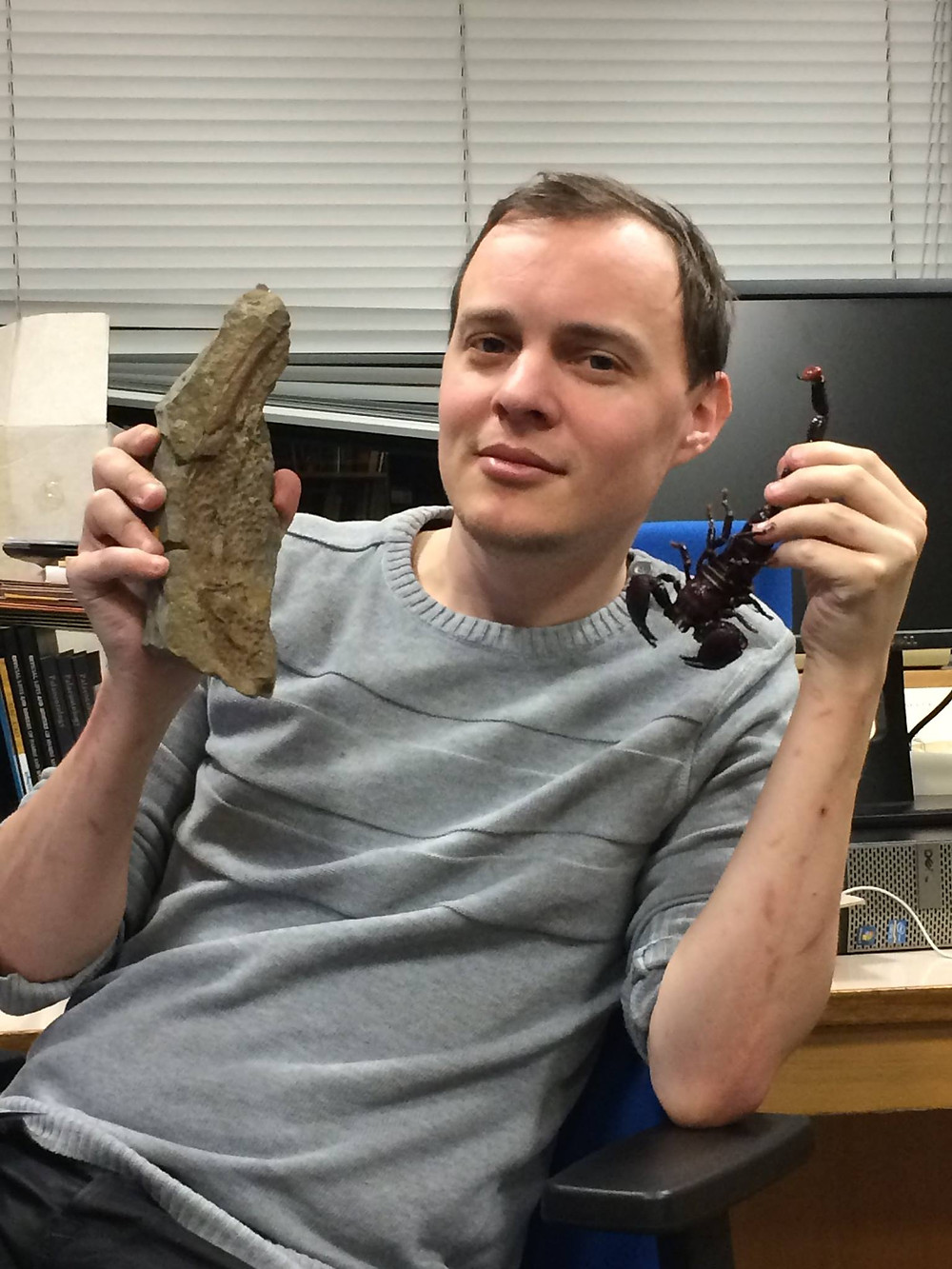 A man holds a model of the largest living scorpion in his left hand and a fossil of the claw of the largest fossilised scorpion in his right. The fossilised claw is much bigger than the model of the live scorpion! The man wears a grey jumper and is sat in front of a messy desk.