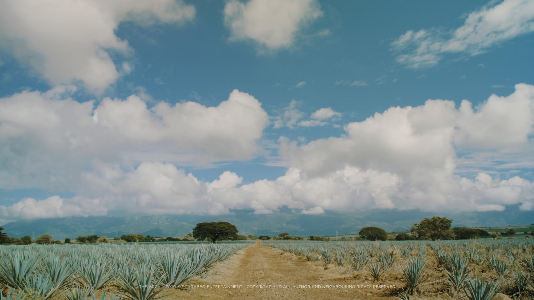 Tequila Skyline