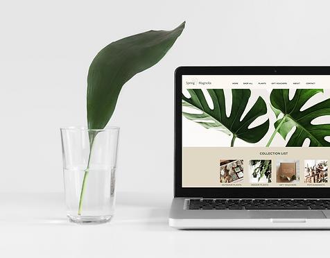 SM-Website-Render.png