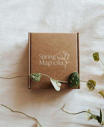 SM-Packaging-Render.png