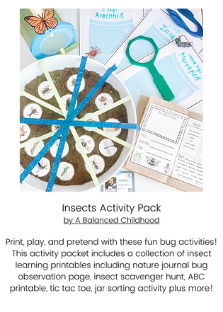 Insects Activity Pack.png