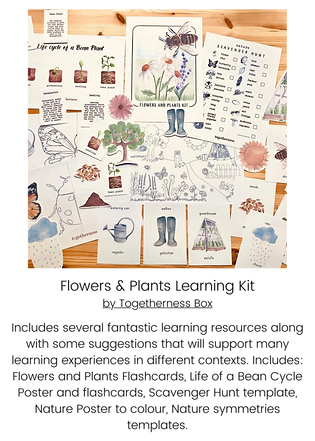 Flowers & Plants Learning Kit.png