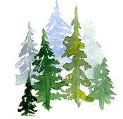 trees-watercolor_edited.jpg