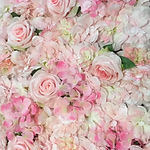 Flower backdrop pink-white.JPG