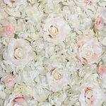 Flower backdrop white-peach.JPG