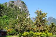 laos-2386085_1280.jpg