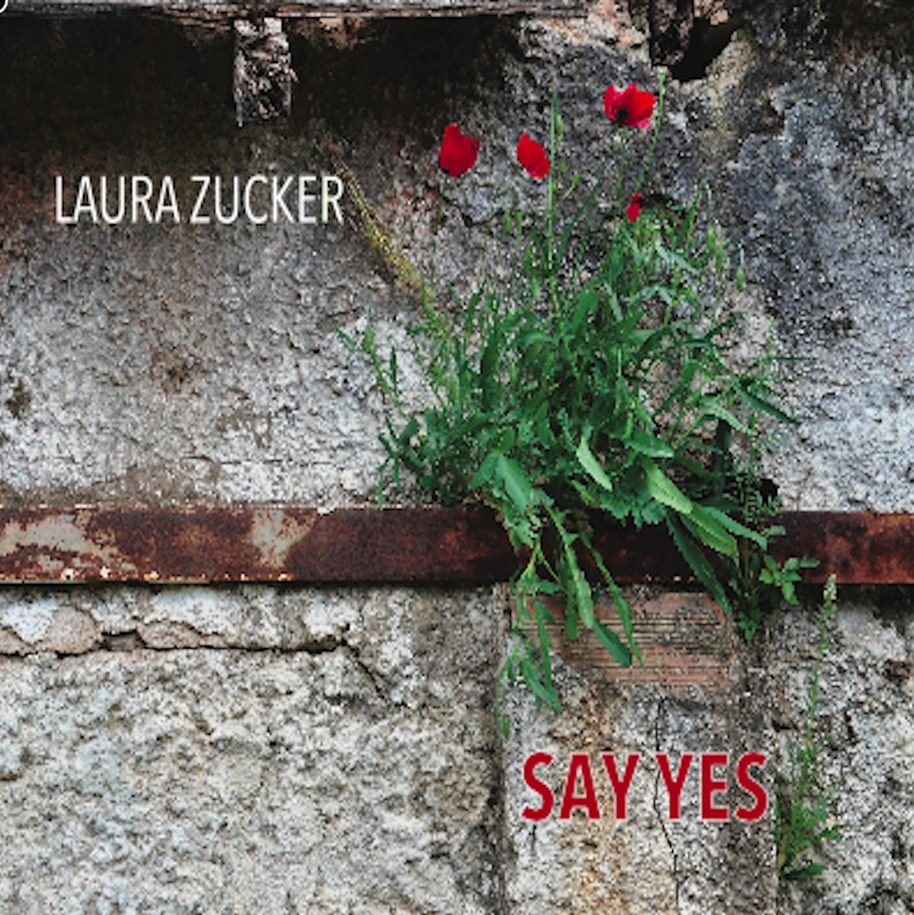 Laura Zucker, Say Yes CD, available here.